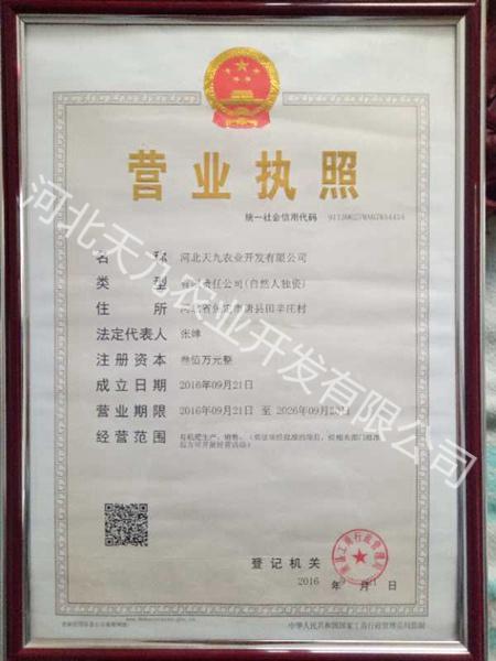 资质荣誉 (2)